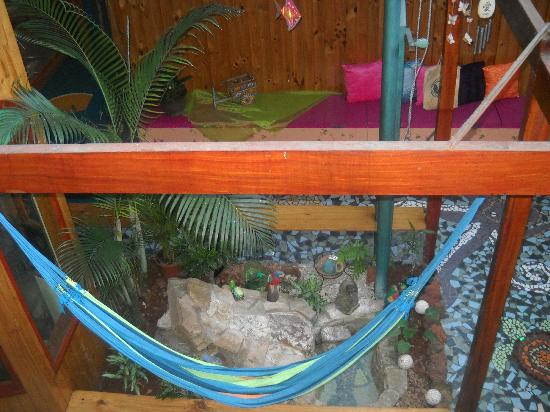 Kaps Place: My daughter loved hanging in this hammock!