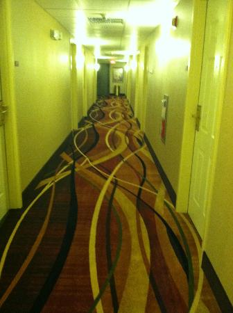 Quality Inn & Suites Shippen Place Hotel: 3rd Floor Hallway