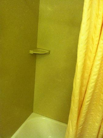 Shippen Place Hotel: Shower