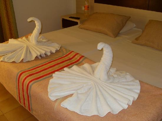 Lymberia Hotel: Swans on arrilval