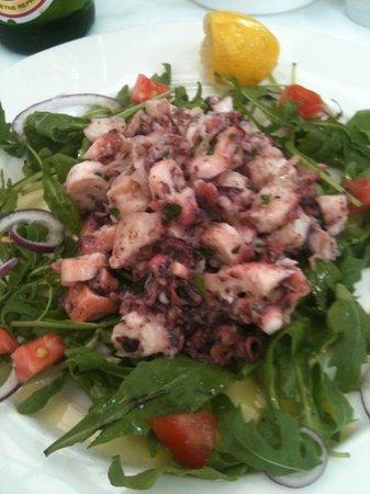 Vinodol : octopus salad