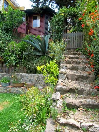 Casa Bolomchon: Back yard