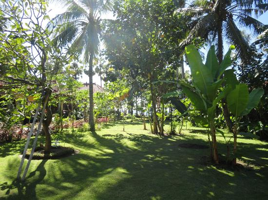 Bali Bhuana Beach Cottages: Grounds