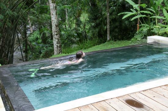 Four Seasons Resort Bali at Sayan: Бассейн виллы, на дальнем плане берег реки Аюнг
