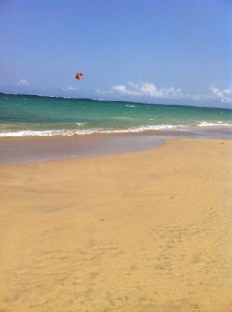 Coqui del Mar Guest House : beautiful beach footsteps away!