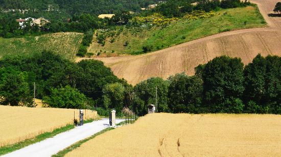 Agriturismo Il Casale : Ingresso