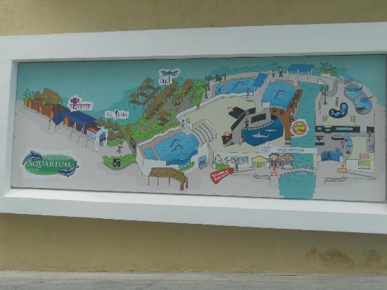 Interactive Aquarium: Aquarium map outside