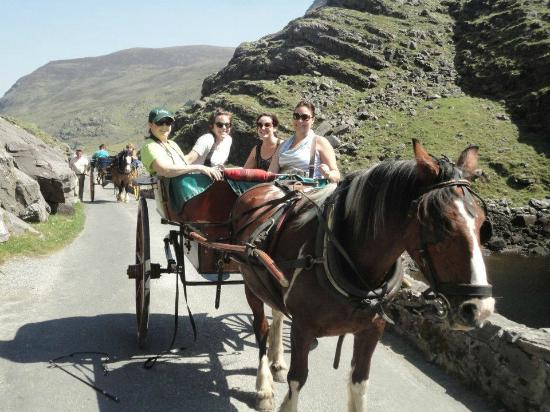 Applecroft House: Horse & Carriage ride through the Gap of Dunloe