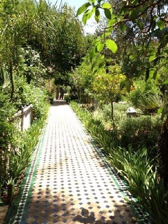 Fez Cafe at Le Jardin Des Biehn: Eden in fez