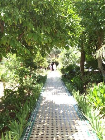 Fez Cafe at Le Jardin Des Biehn: garden of Eden in fez 