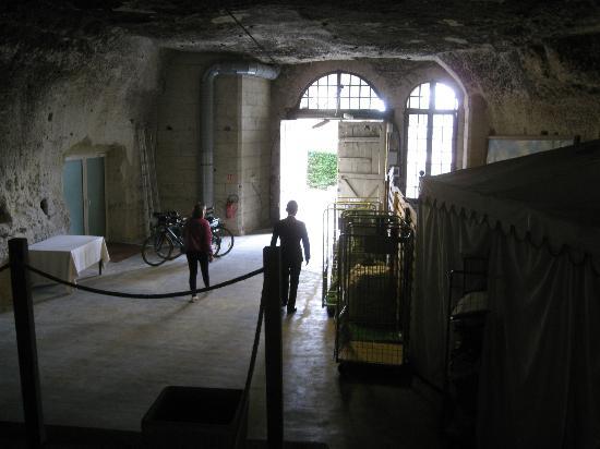 Les Hautes Roches: wine cave