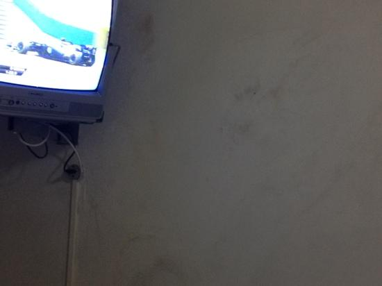 Martin Pescador: paredes mofadas