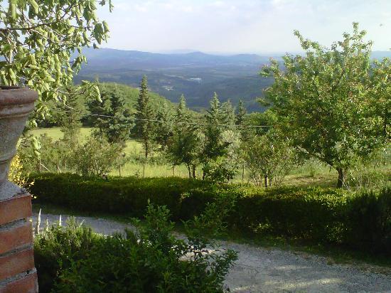 Country Inn Casa Mazzoni: Another Scenic View at Casa Mazzoni