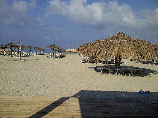 RestHouse : Beach Area