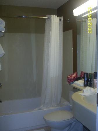 Microtel Inn and Suites by Wyndham Enola/Harrisburg: Bathroom