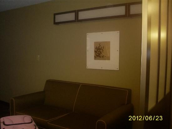 Microtel Inn and Suites by Wyndham Enola/Harrisburg: Sitting area