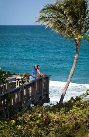 jupiter beach resort spa florida resort reviews. Black Bedroom Furniture Sets. Home Design Ideas