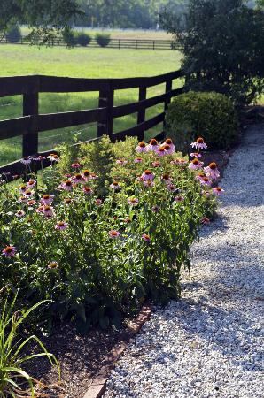 Goose Creek Farm Bed and Breakfast: One of the gardens surrounding the building