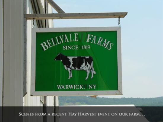 Bellvale Farms Creamery Foto