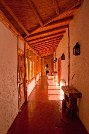 San Alfonso, شيلي: Rincones en Santuario del Rio 