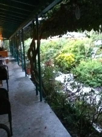 Rooms on the left under the awning. Coffee and breakfast bar about halfway down the walkway.