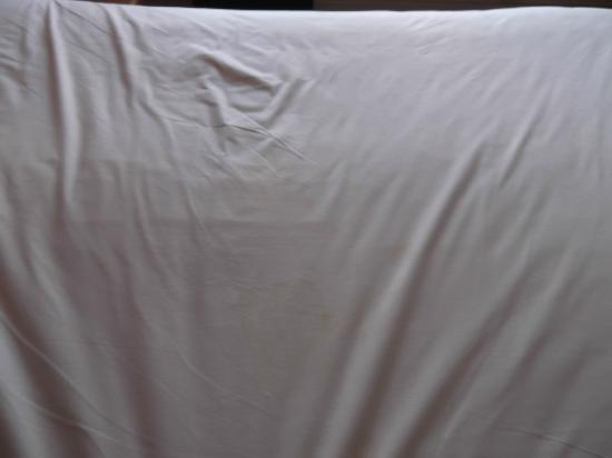 Village Hotel Leeds North: Stains on the mattress cover .. after i had stripped the bed!