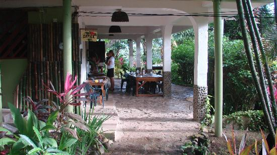 Hibiscus Valley Inn: Ontvangst-/ontbijt-/diner ruimte