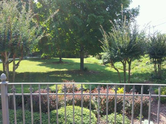 Ramada Gainesville: courtyard
