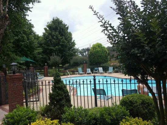 Ramada Gainesville: pool