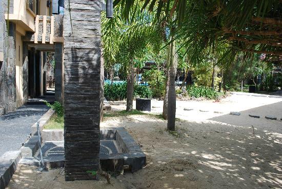 Palm Beach Resort : Surrounding area view