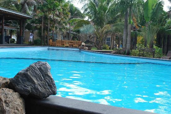 Palm Beach Resort : Swimming pool