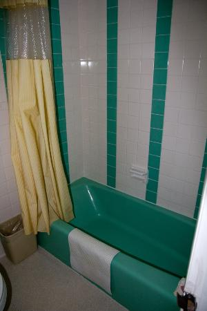 Silver Ridge Lodge: Tub & Shower