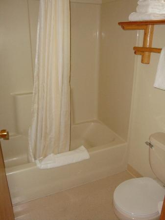 Denali Princess Wilderness Lodge: Bath