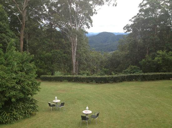 Mapleton Falls Accommodation: view from our unit