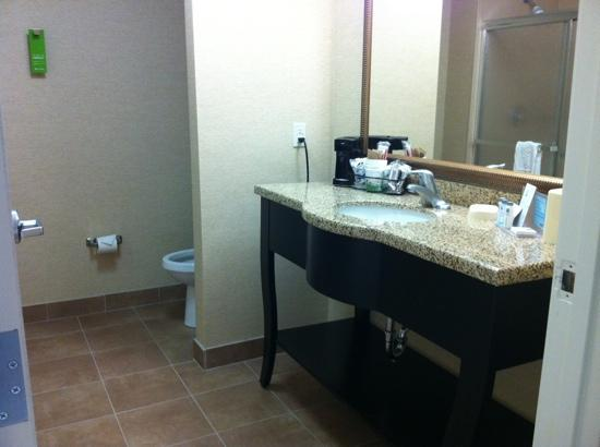 Hampton Inn & Suites Pueblo/North : roomy bath