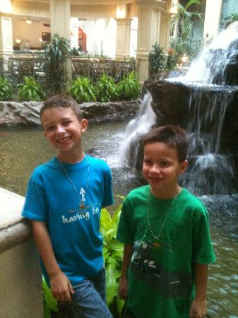 Embassy Suites by Hilton Dallas DFW Airport South: the waterfall was a fun and beautiful feature and made for a nice area for breakfast