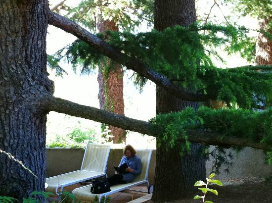 Chateau De Riell: Relaxing on a private tree shaded terrace