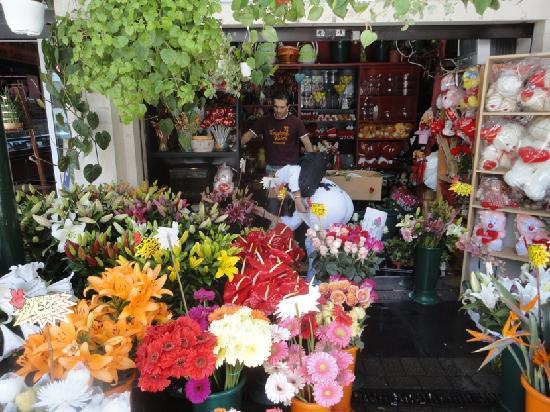 Playa de Las Canteras: Flower shop