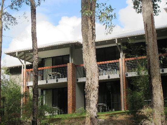 Darby Park Serviced Residences: Viewing C Block from the State Forest