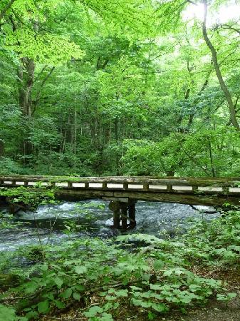 Towada, Japan: 橋と清流