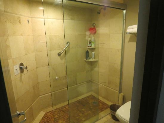 Hard Rock Hotel Vallarta: big double shower