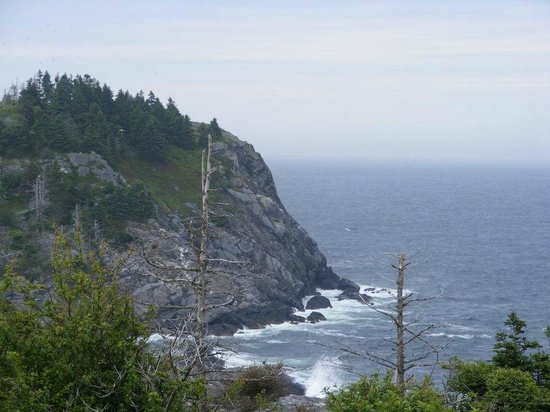 Tribler Cottage : hiking on the cliffs from Lobster Cove to trail 4