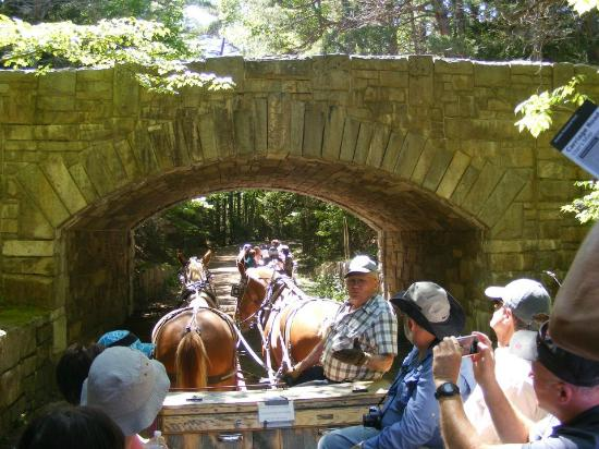 Carriages of Acadia: MItchell describing the stone bridge work