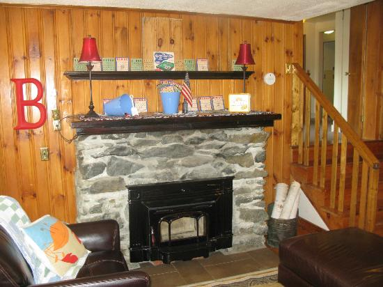 Barron Brook Inn: Warm fireplace
