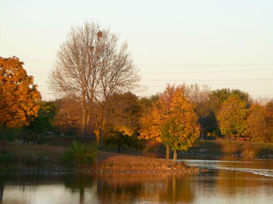 Palos Heights, IL: Lake Katherine in the Fall