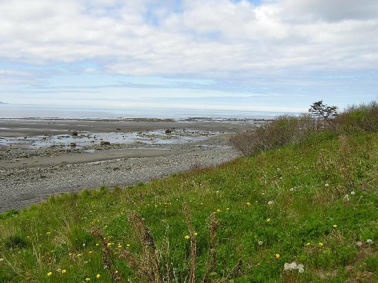 Beach Area behind Ocean Shores
