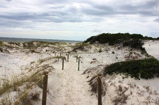 St. Joseph Peninsula State Park: The dunes