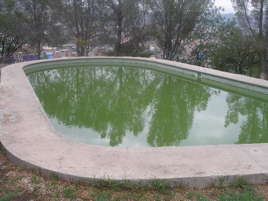 La Abadia Tradicional: la alberca parece agua de Alfalfa