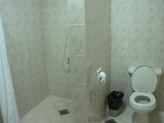 Bohol Tropics Resort: bathroom