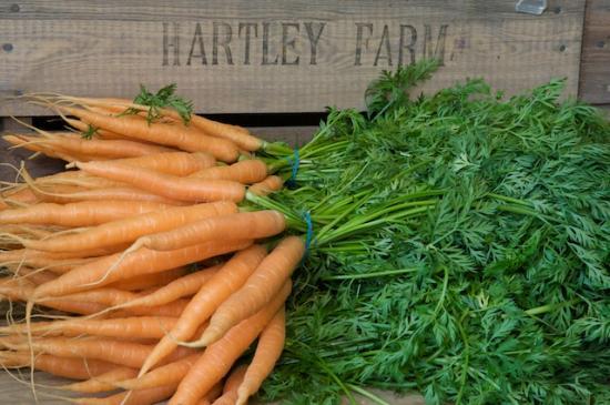Hartley Farm Picture
